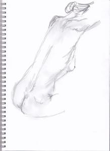 female nude sketch